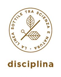 kemon-actyva-disciplina